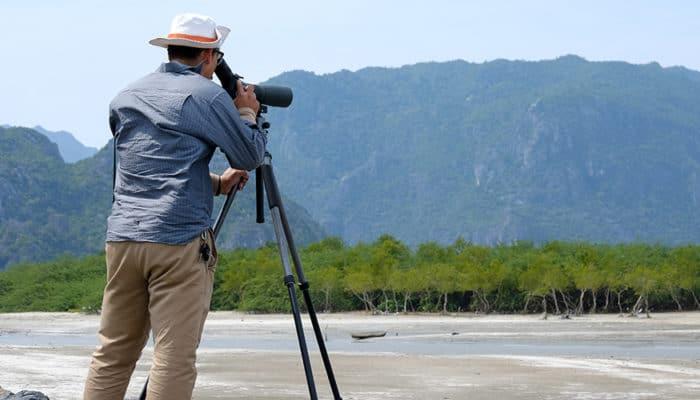 4 Best Monoculars for Bird Watching
