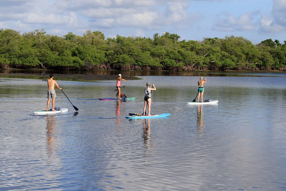 stand up paddle boarding florida