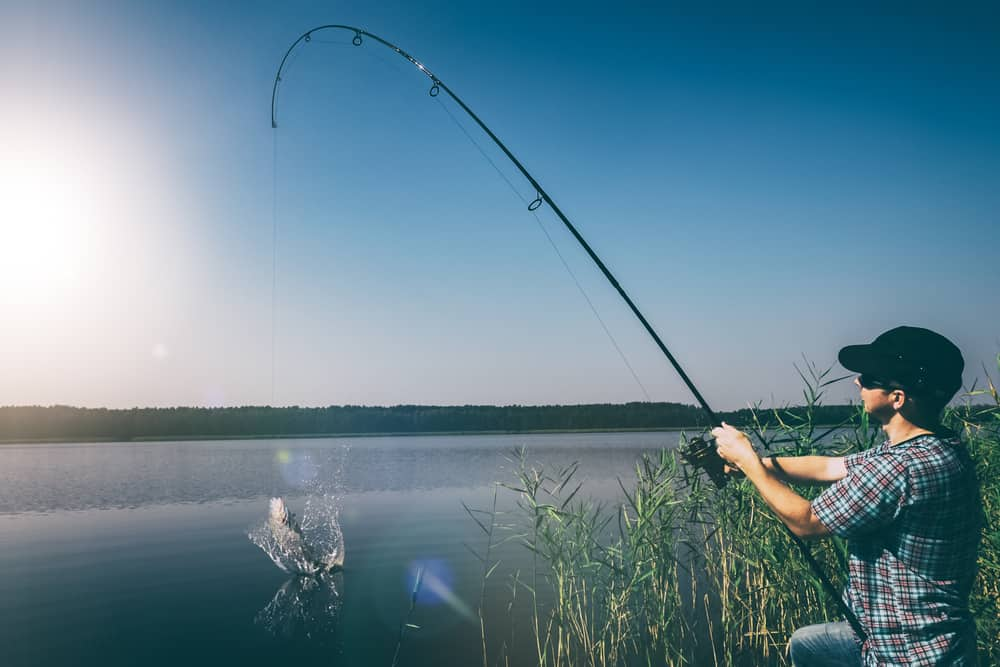 reeling in a fish