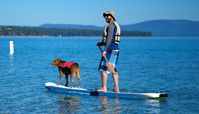 A Simple Guide to Stand Up Paddle Boarding with Your Dog!