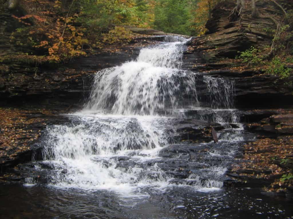 Falls Trail, Ricketts Glen State Park, Pennsylvania