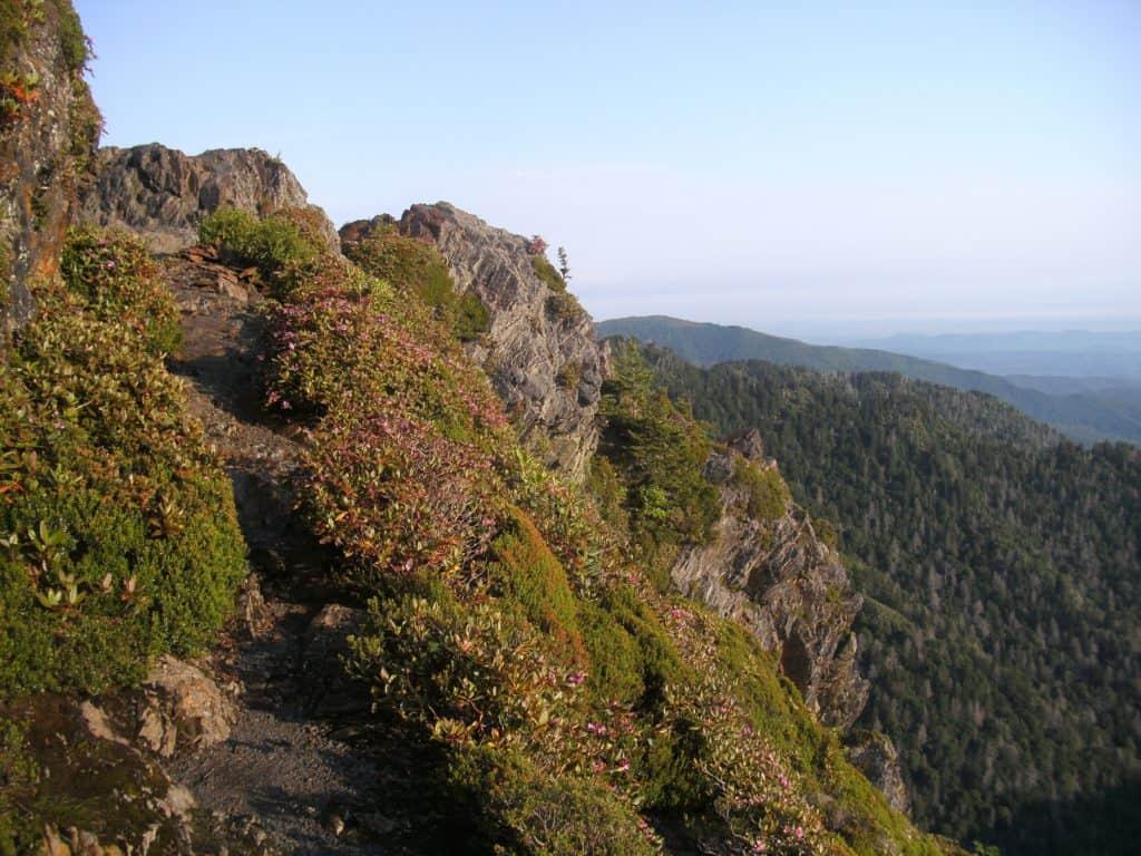Appalachian Trail near Charles Bunion, Tennessee