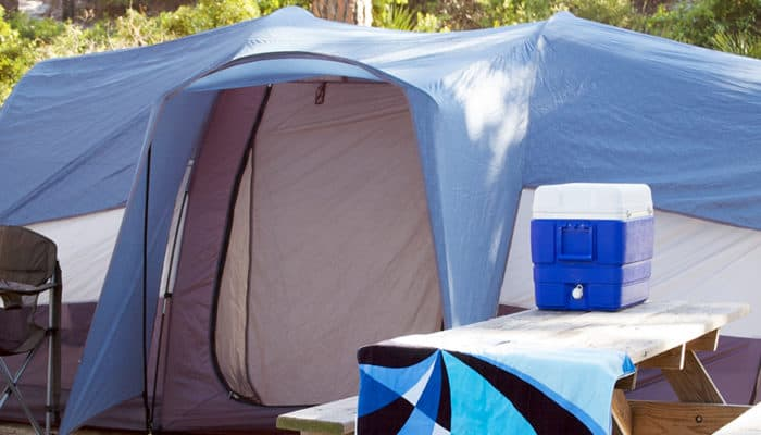 7 Best Camping Coolers That Are Brilliantly Bear-Proof!