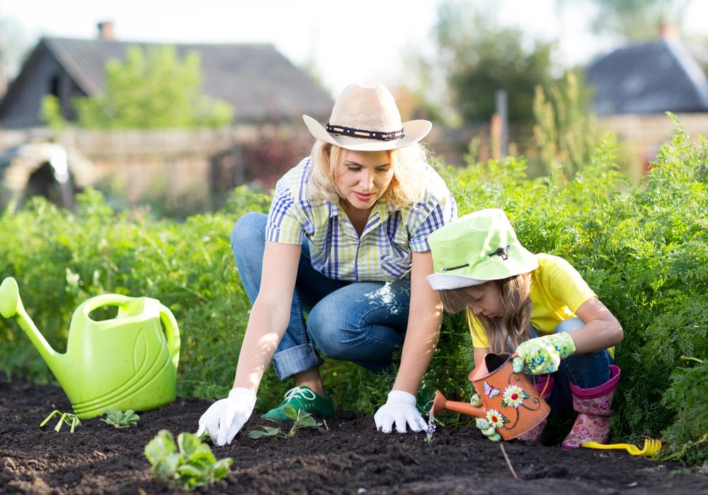 plant-a-garden