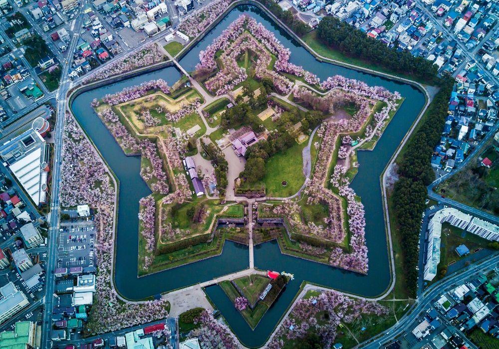 drone-spring-cherry-blossoms-fort-goryokaku-hokkaido-japan